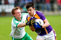 Derrygonnelly (1-14) V Ederney (1-5) in Senior GAA Football Quarter-Final Championship Replay.