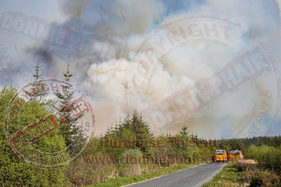 Gorse and Forest Fire at Mullaghfad Forest.