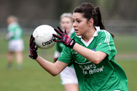 Fermanagh Ladies (1-3) V Westmeath (2-18) in National GAA Football League, Division 2, Round 2.