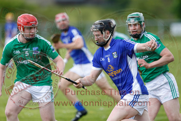 Fermanagh (0-17) V Cavan (4-17) in Lory Meagher Hurling Cup.
